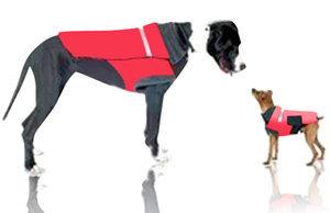 Dog Apparel Measurement
