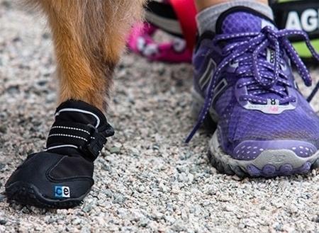 Summer Dog Boots