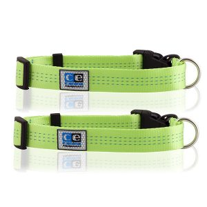 Utility Clip Dog Collars (Lime)