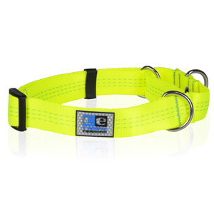 Sporty & Sleek Dog Collars
