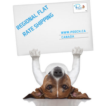 Flat Rate Shipping Dog Gear